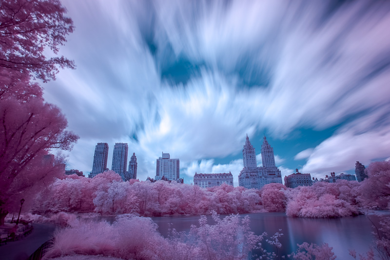 Central Park in Infrared (Channel Swapped, Final)