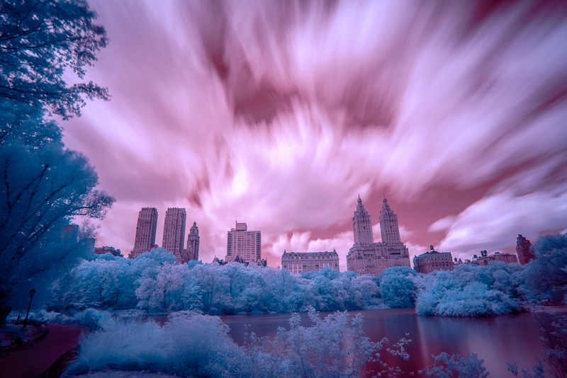 Central Park in Infrared 3 (Channel Swapped, LR)
